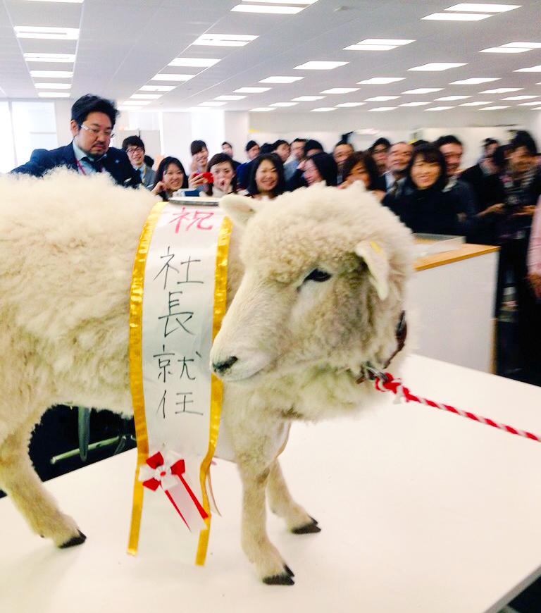 """お正月には干支の羊が新社長就任!? みんなが笑顔になっちゃう """"さわぎ"""" が大好きな会社です。"""